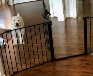 Dog Proofing Experts - Custom Fit Dog Pet Gate - Austin - San Antonio Texas